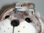 walrus2